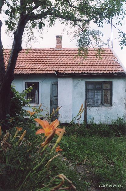 http://www.viaview.ru/photo/555795.jpg